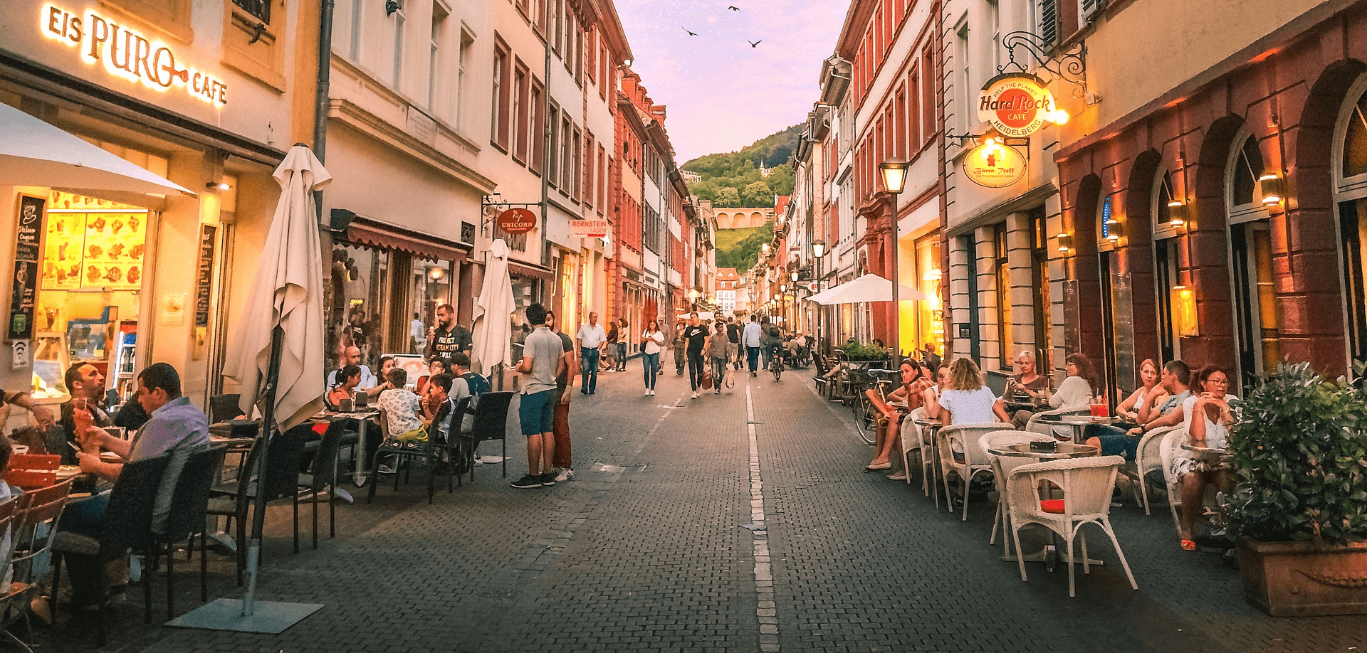 Compare prices and choose.
